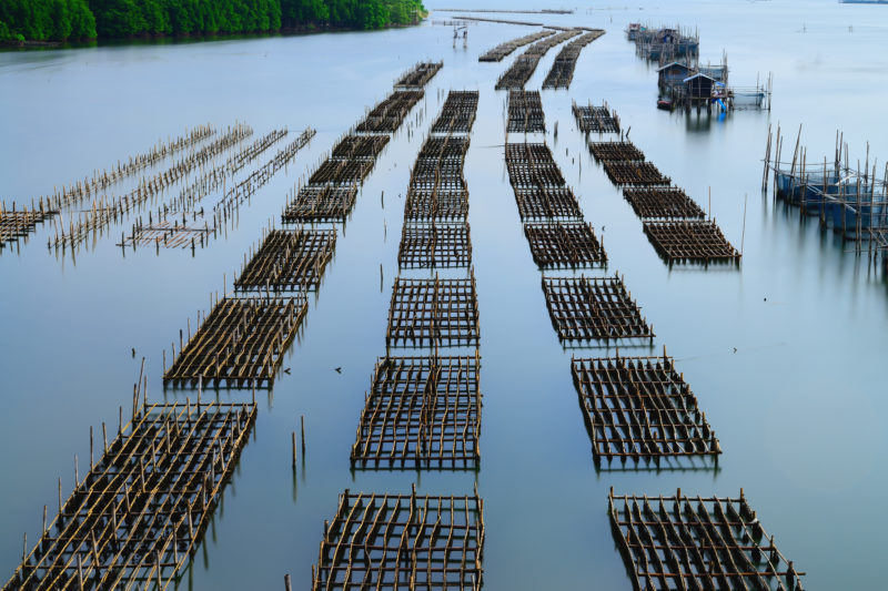 Aquaculture in chanthaburi,Thailand Courtesy of University of Ghent